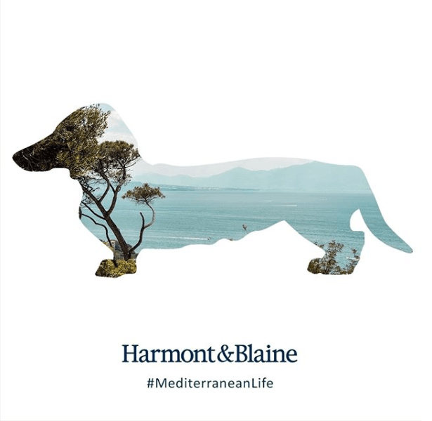 harmont mediterranean